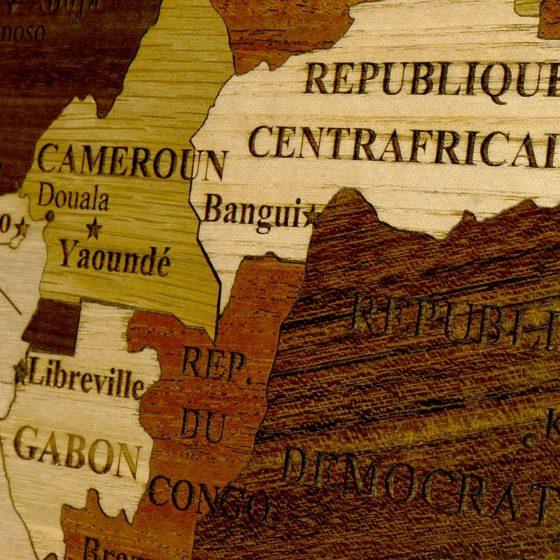 carte-afrique-detail-01